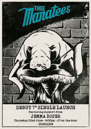 manatee launch poster